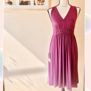 *NWT Ann Taylor Loft (Trulli) Knit Dress w/ tie L